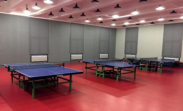 Section tennis de table de l'ASÉS (AS Électricité de Strasbourg)